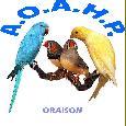 Association Ornithologique des Alpes de Haute Provence
